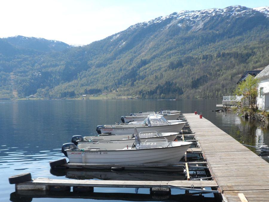 Dalsfjord1